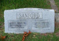 Mary Louise Sanford