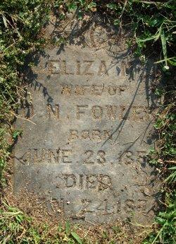 Eliza M <I>Huls</I> Fowler