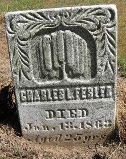 Charles L. Fesler