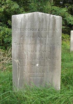 Theodore Henry Andrews