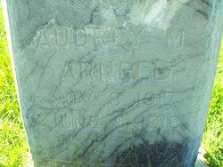Audrey Michaelson Arnell