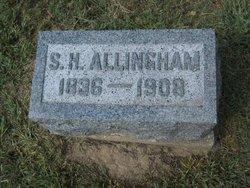 Stephen H Allingham