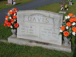 Dullie Elizabeth <I>Silver</I> Davis