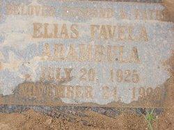 Elias Favela Arambula
