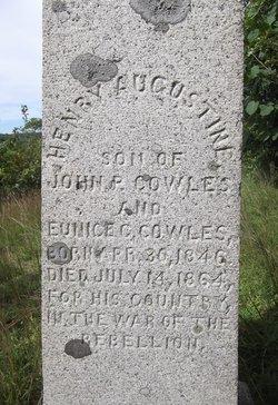 Henry Augustine Cowles