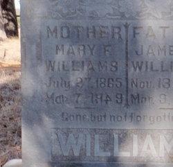 Mary Frances <I>Wilson</I> Williams