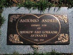 Antonio Andres Avinante