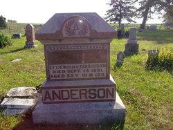 Mary Etta <I>Elwood</I> Anderson
