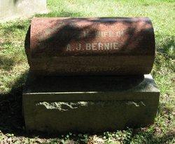 Anna Helen <I>Julsen</I> Bernie
