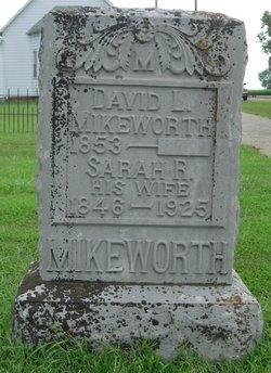 David L. Mikeworth