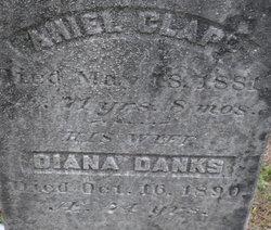 Diana <I>Danks</I> Clapp