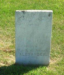 Amanda E Alexander