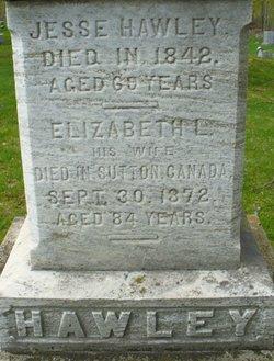 Elizabeth L Hawley