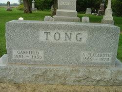 Anna Elizabeth <I>Mitchell</I> Tong
