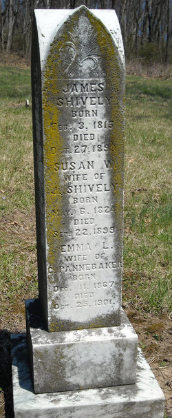 Susan W Shively