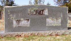 Lala Lucy <I>Dixon</I> Bailey