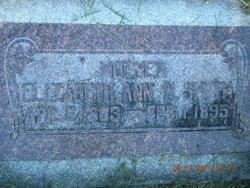 Elizabeth Ann <I>N.</I> Smith
