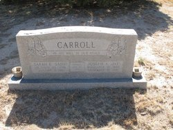 Sara E . Carroll