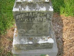 Benjamin F Williams