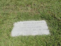 Edith Cleo <I>Norris</I> Blackburn