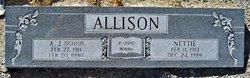 Nettie May <I>Persky</I> Allison