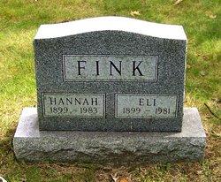 Eli Fink