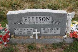 Crystal Anna Marie <I>Taylor</I> Ellison
