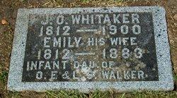 John Ogden Whitaker
