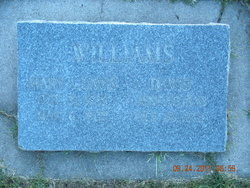 Mary Ann <I>Davies</I> Williams
