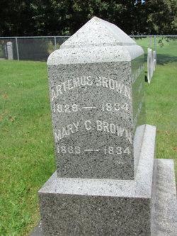 Artemus Brown