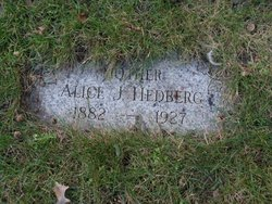 Alice J Hedberg