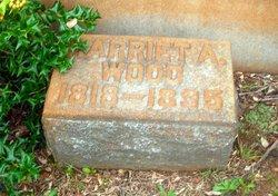 Harriet Agnes <I>Wilkins</I> Wood