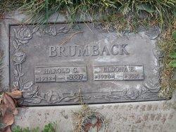 Eldona Edna <I>Wachter</I> Brumback