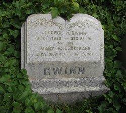 Mary <I>Brockelbank</I> Gwinn