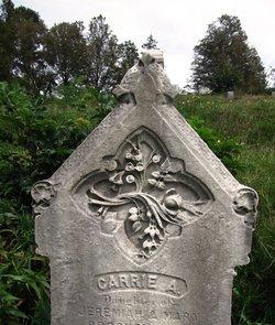 Carrie A. Brockelbank