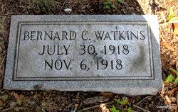 Bernard C Watkins