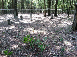 Beasley-Perdue Cemetery