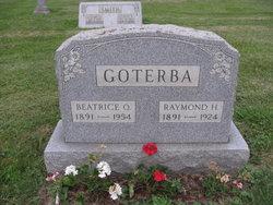 Raymond H Goterba