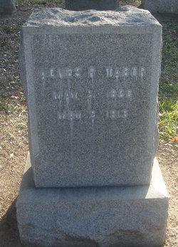 Agnes R. Tabor