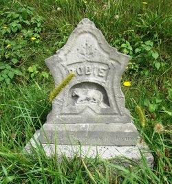 """Robert A. """"Robie"""" Davis"""