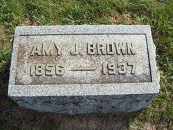 Amy J Brown