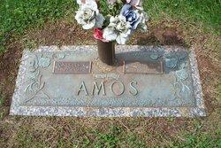 Nellie Merle <I>Archer</I> Amos