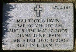 Troy Glenn Irvin