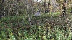 Gardner Burial Plot