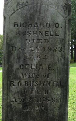 Richard Oliver Bushnell