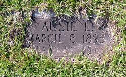 Ausie Nettie <I>Lang</I> Hunt