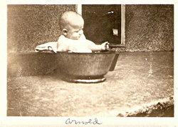 Arnold Anson Richards