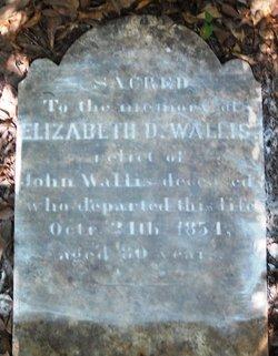 Elizabeth Doyle <I>Clark</I> Wallis
