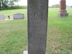 Arthur J. Carroll