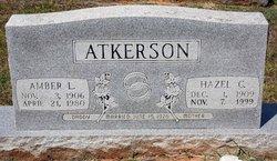 Amber L Atkinson